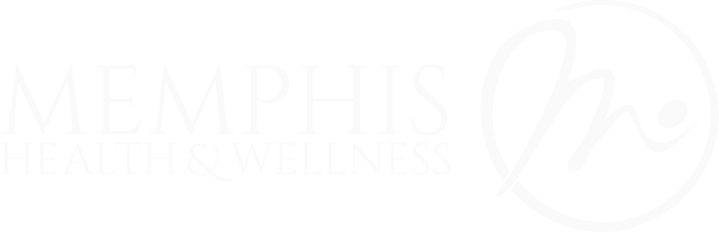 Memphis Health & Wellness